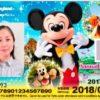 ディズニー年間パスポート 一年後に更新と新規はどっちがお得??